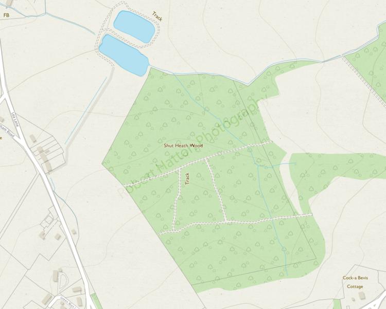 Shut Heath Wood_Map