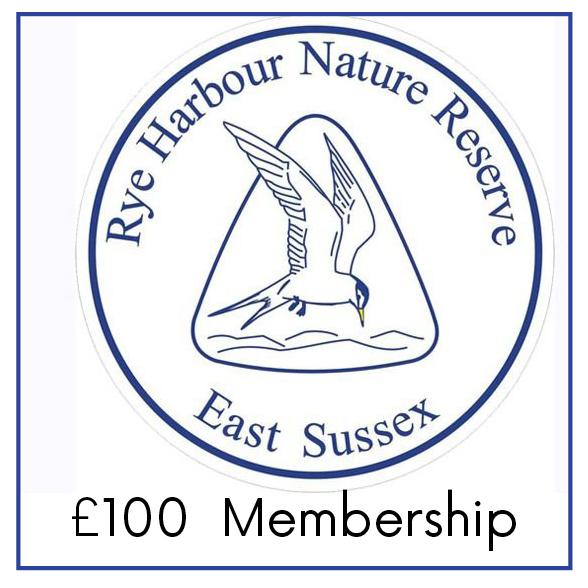 £100 Membership