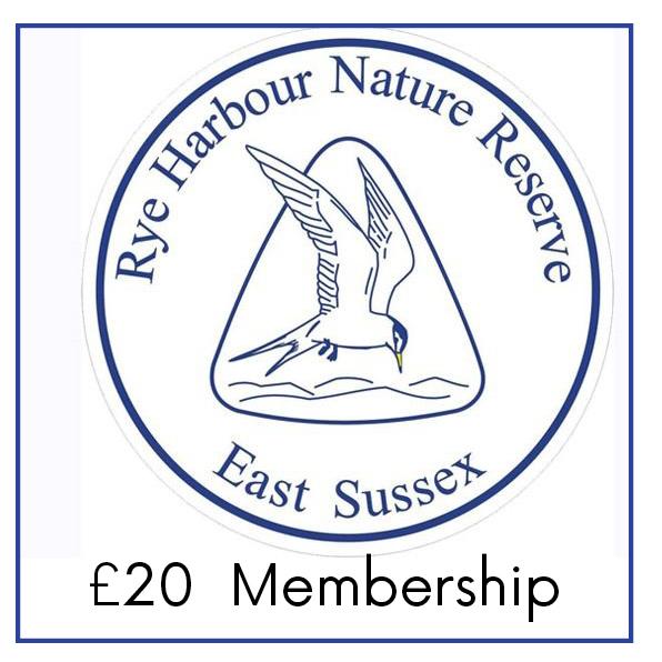 £20 Membership