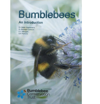 Bumblebees an introduction