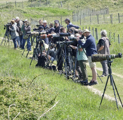 The reserve is the natural home of the keen birder