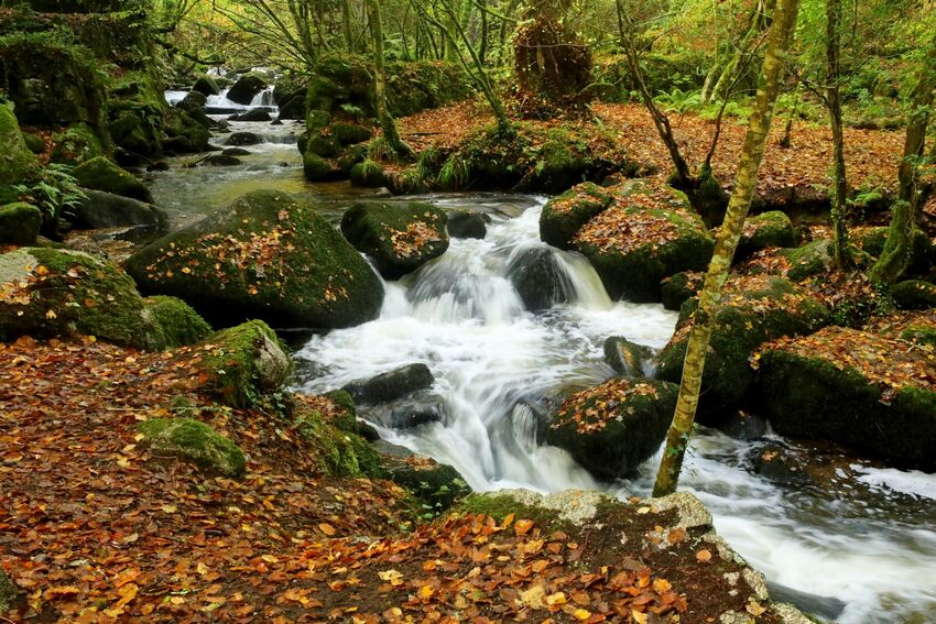 Kennal Vale Stream