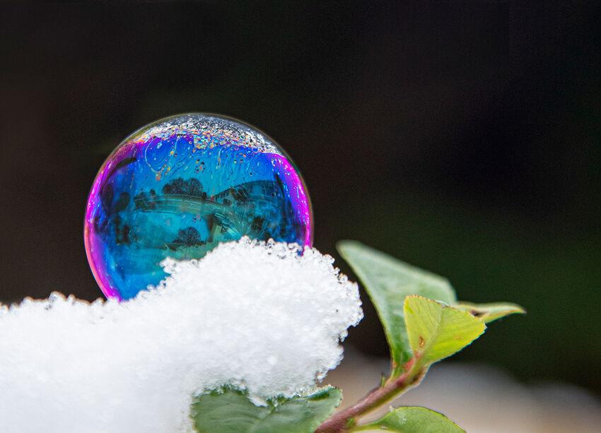 Sue Bennett ---Snow Bubble
