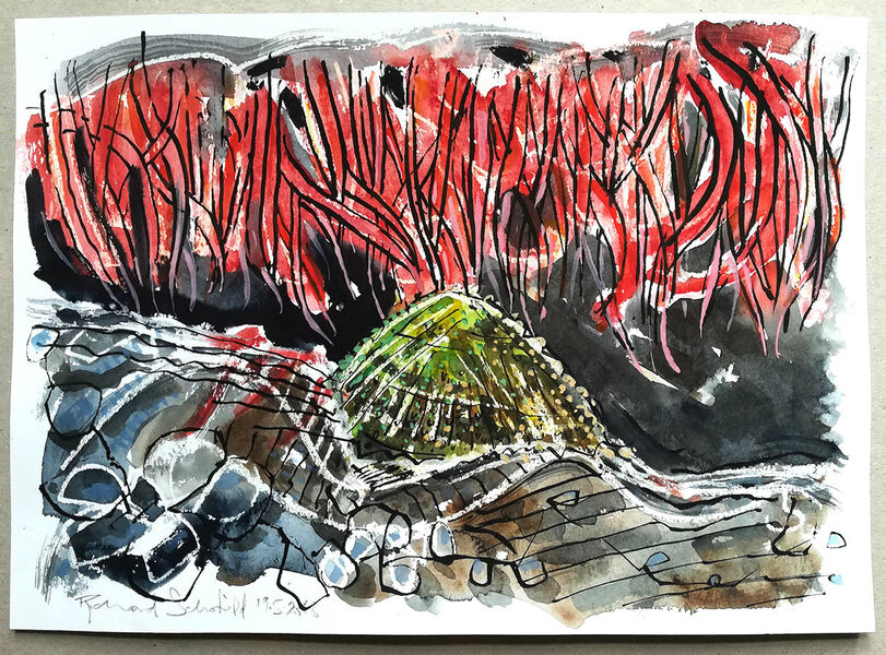 Red Anemone Realm #1