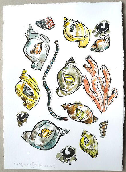 Mollusc Hustle Bustle #8