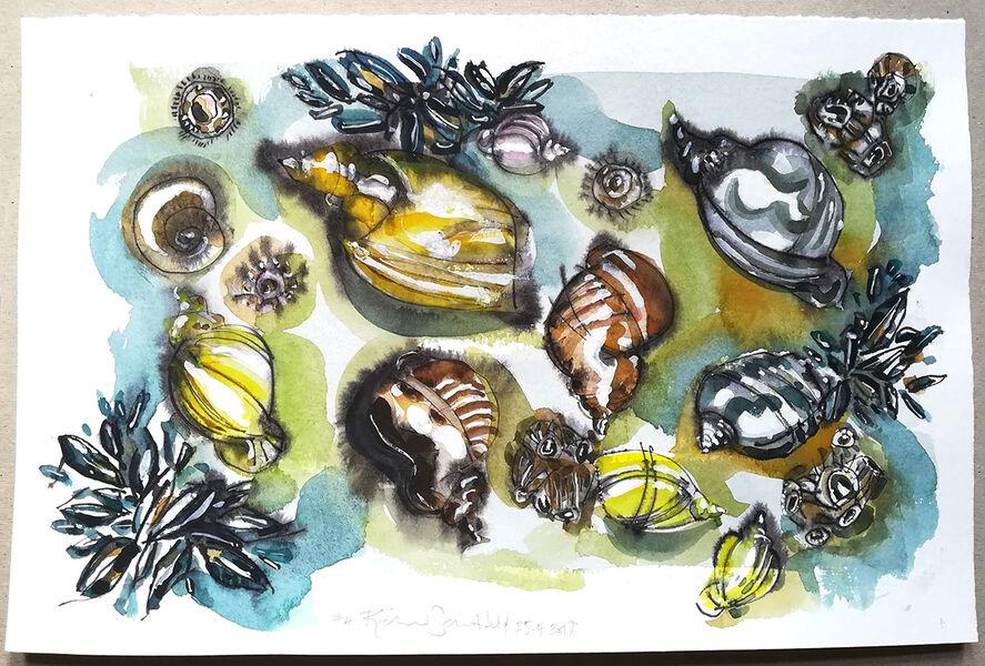 Mollusc Hustle Bustle #3