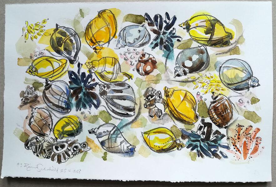 Mollusc Hustle Bustle #4