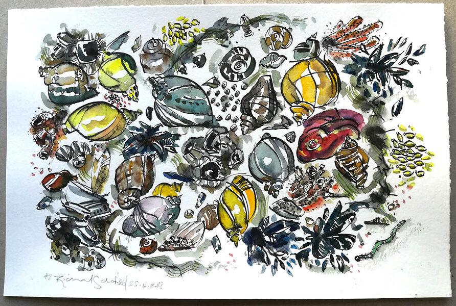 Mollusc Hustle Bustle #6