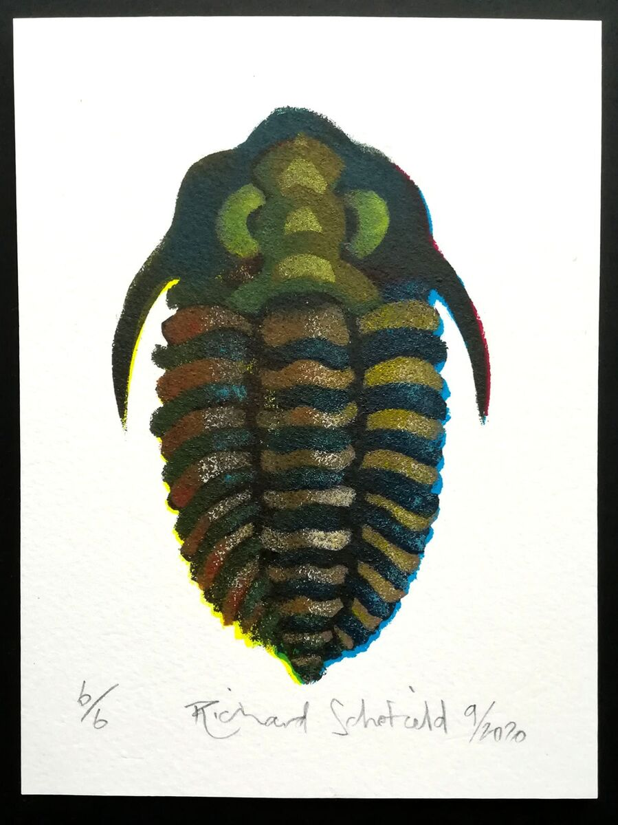 Trilobite 2, edition of 6, each varies slightly