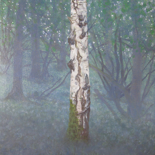 May - Chilly Spring Dawn, Birch