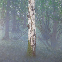 Lea & Paget's Wood: Chilly Spring Dawn, Birch