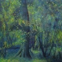 June - Lea & Paget's Wood, Summer