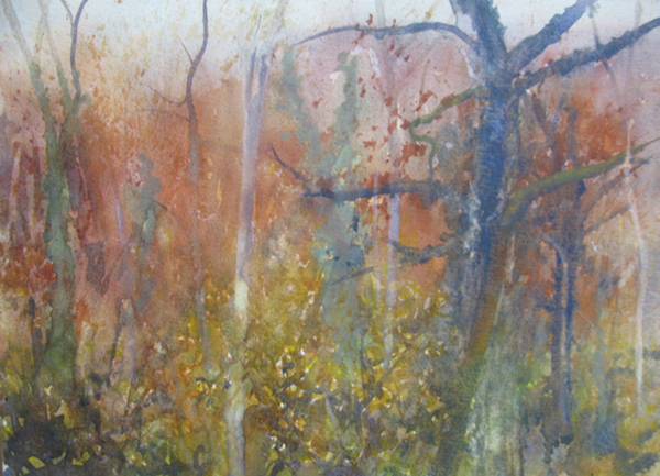 November - Damp November afternoon I