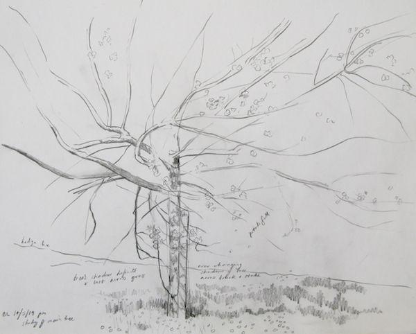 outdoor pencil sketch