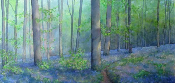 Bluebells, Queenswood II