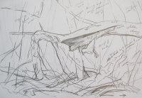 Fallen Cherry - outdoor sketch 1 of 3