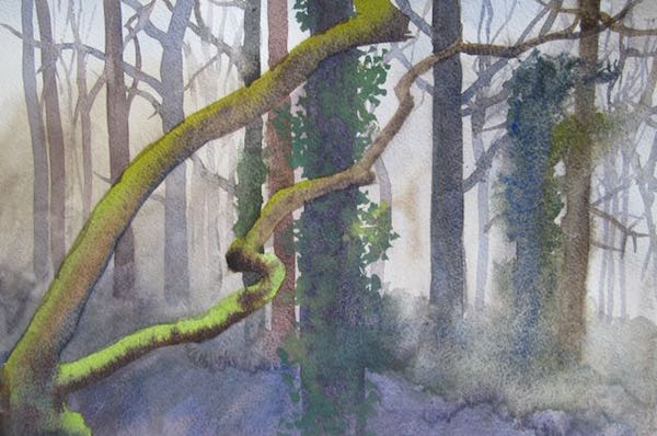 February - Young Oak on Quarry Edge