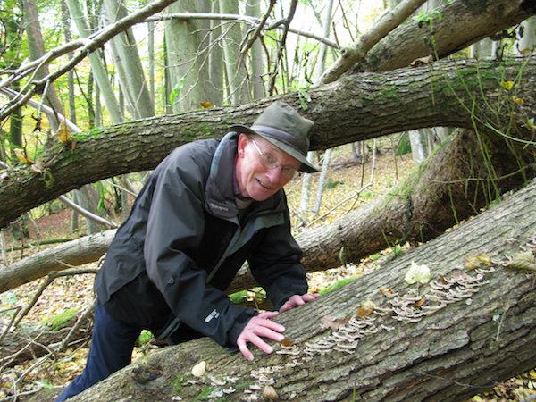 George Peterken negotiating tree fall