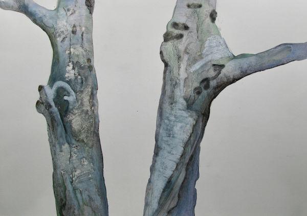 watercolour birch