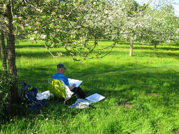 artist drawing orchard