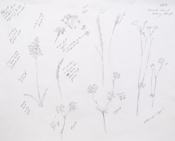 pencil sketch outdoor meadow