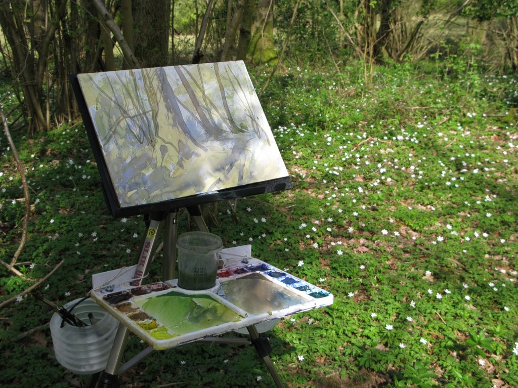 outdoor watercolour spring wood
