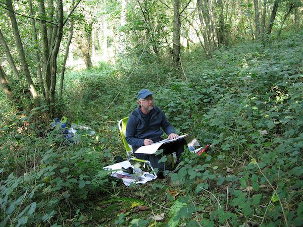 September 2020 - sketching in North Wood