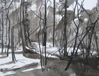 January - Winter Sunshine