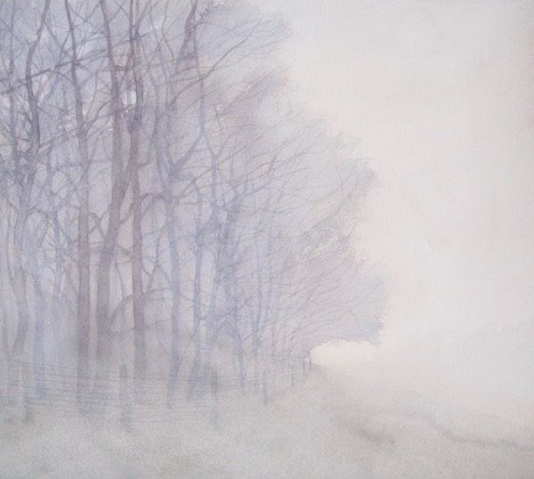 January - Wood Edge on Foggy Morning