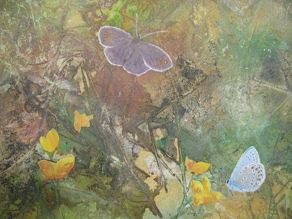 watercolour ink butterflies meadow