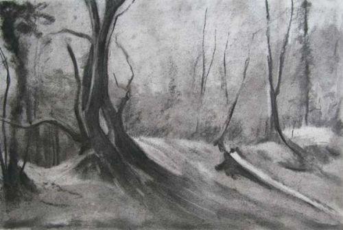Oak Tree V