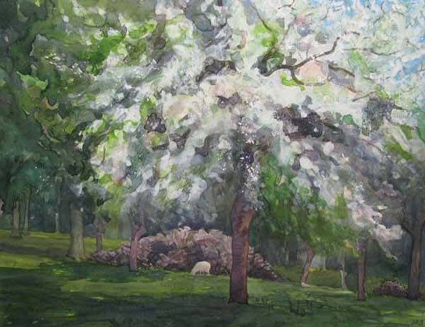 Orchard - Blossom I