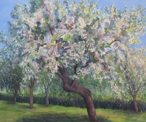 Orchard - Blossom IV