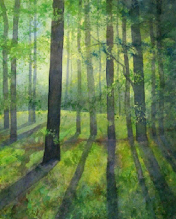 watercolour woodland spring light