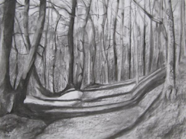 Queenswood - Hidden Path