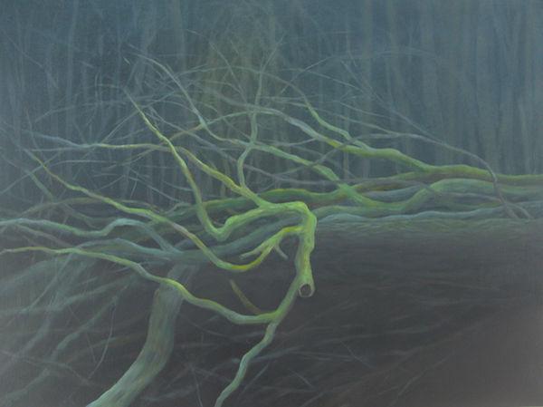 oil fallen trees
