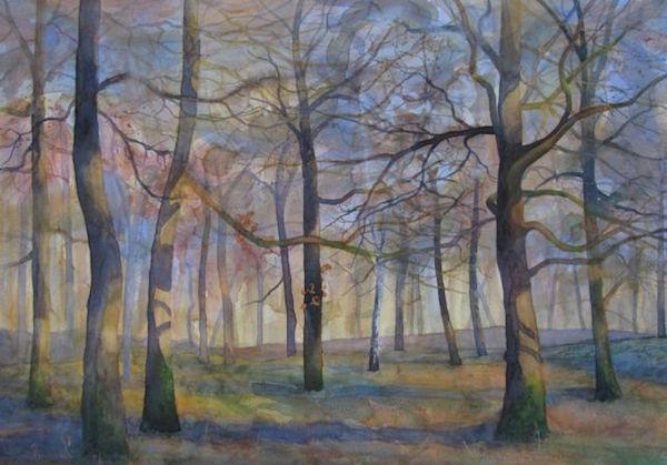 Wellington Wood - Winter Sun