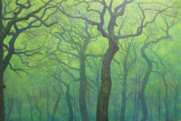 oil spring White Wood
