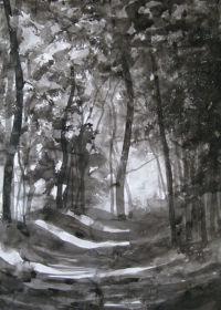 Woodland Path I