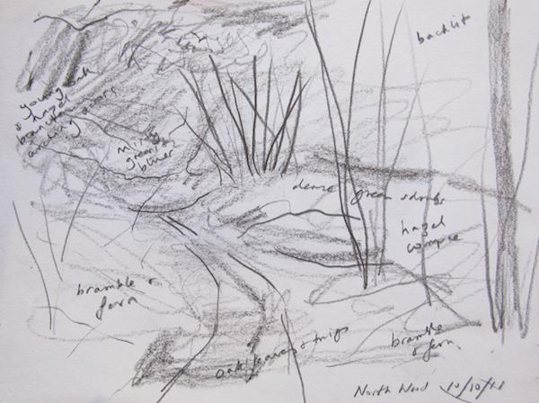 Outdoor sketch, pencil