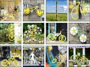 6 Yellow Bikes