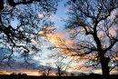 Beckwithshaw Sunrise