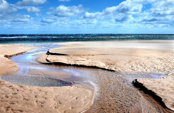 Cheswick Beach