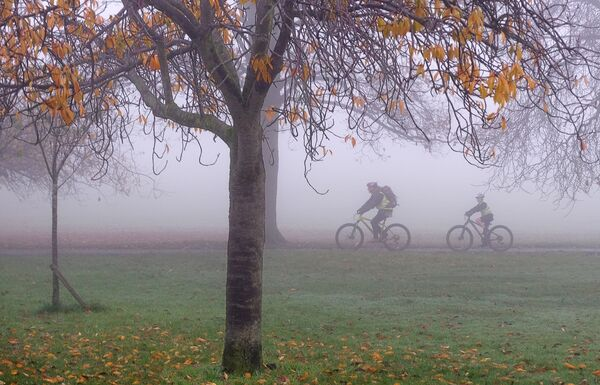 Cycling through the Mist