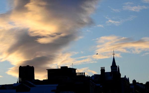 Harrogate Dawn