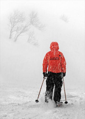 Snowstorm skier