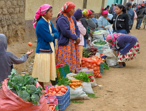 Market Line up