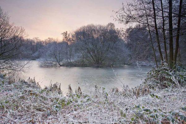 Frosty Lakes