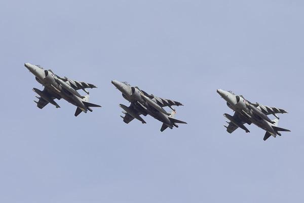Harrier Formation