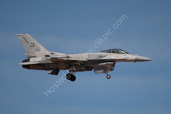 UAE F-16